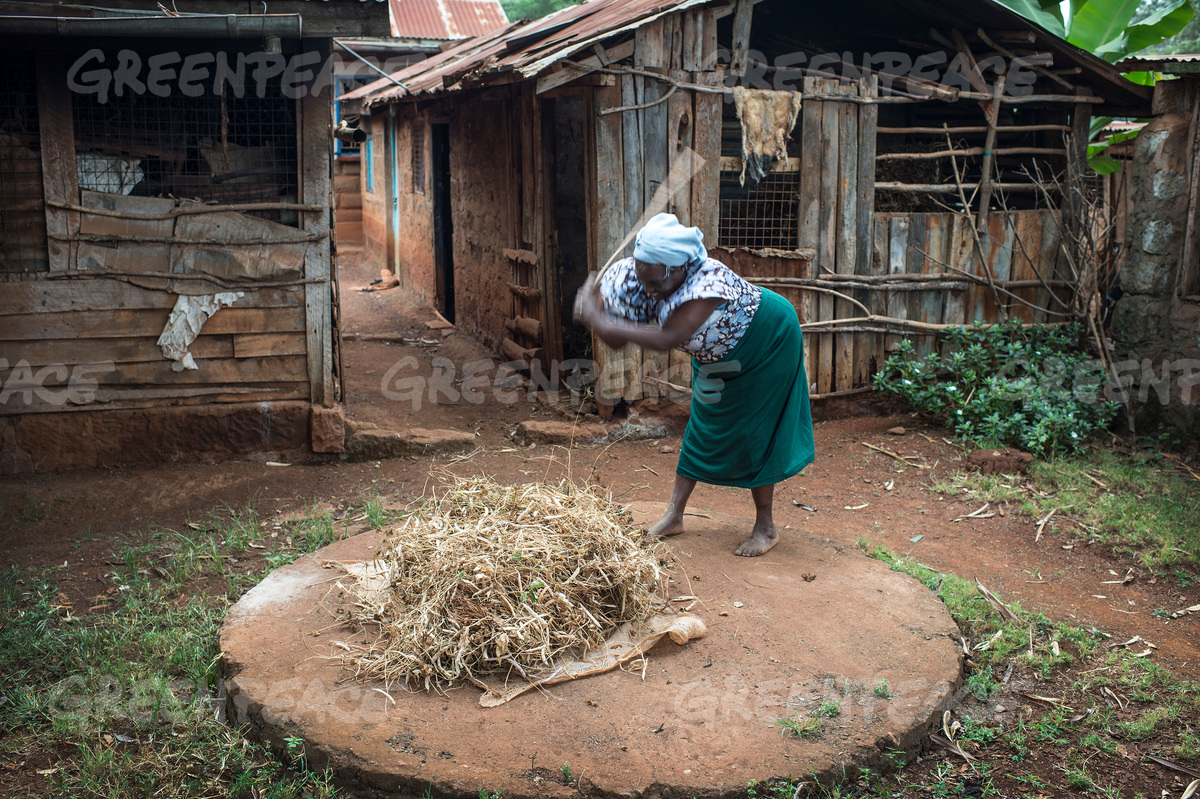 Small-Scale Farmer in Kenya