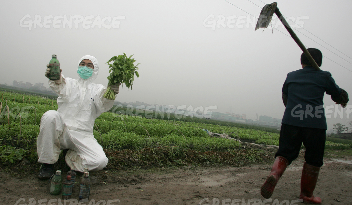 Choi Sum and Pesticide Bottles in Toxin Contaminated Area in China