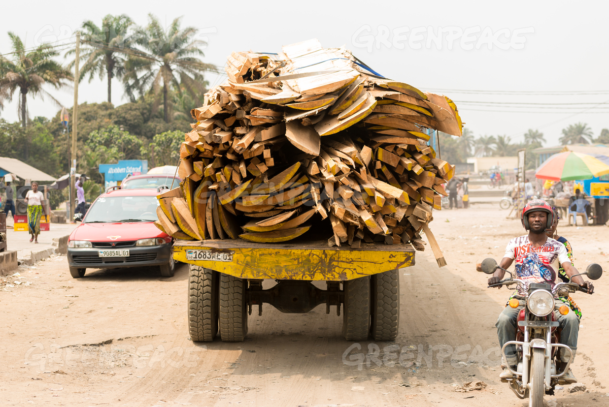 Transportation of Illegal Timber in the DRC