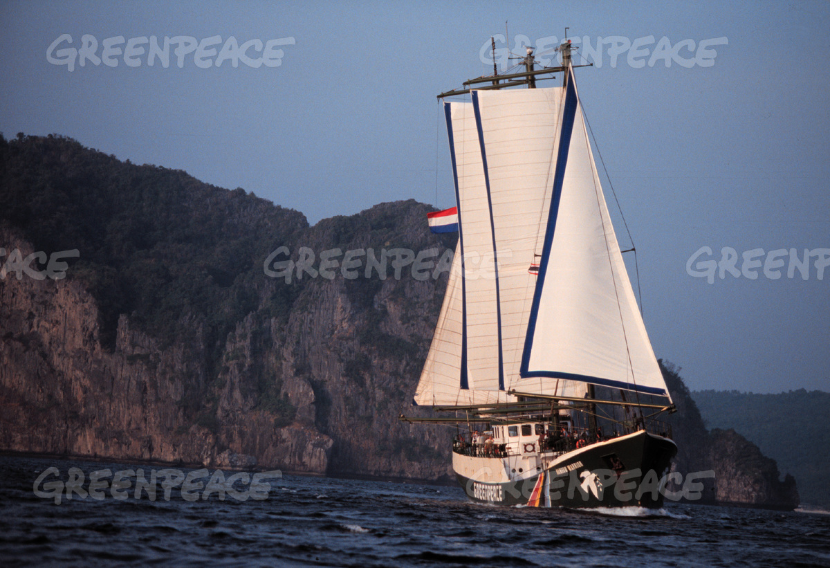 Rainbow Warrior Sailing in Phi Phi, Thailand