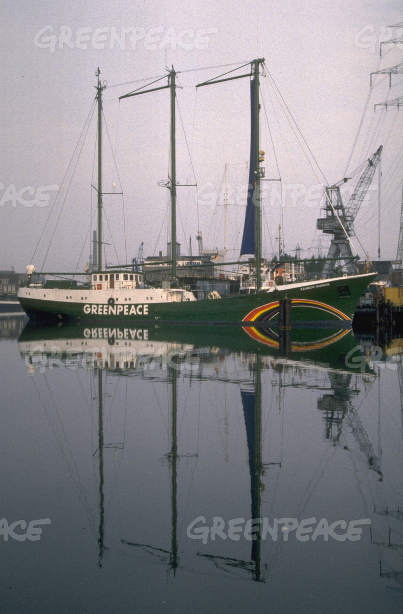 The New refitted Rainbow Warrior II