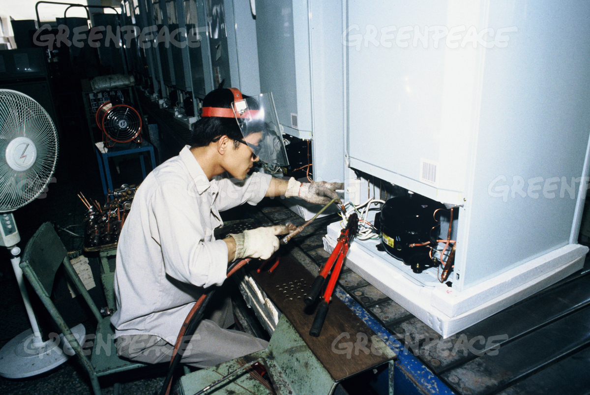 Greenfreeze Production at Factory in China