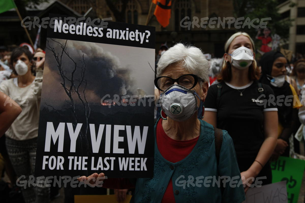 Activists at the Bushfires and Climate Emergency Rally in Sydney