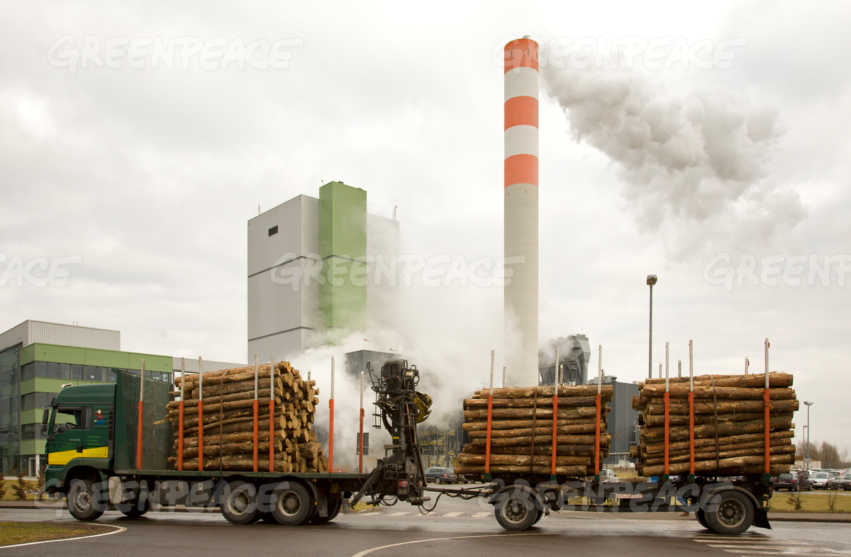 Power Plant of Cellulose Factory Stendal