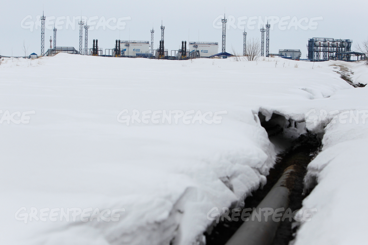 Oil Pipeline in Western Siberia