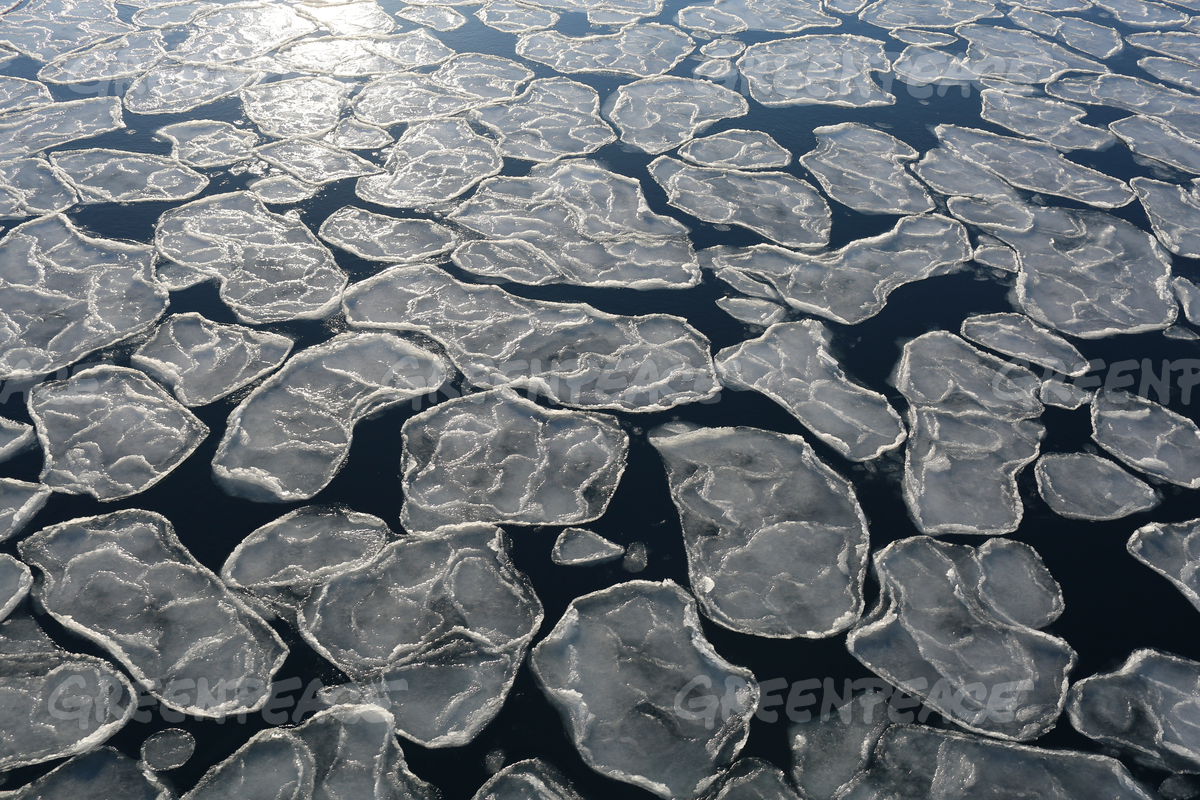 Ice Floating on the Arctic Ocean