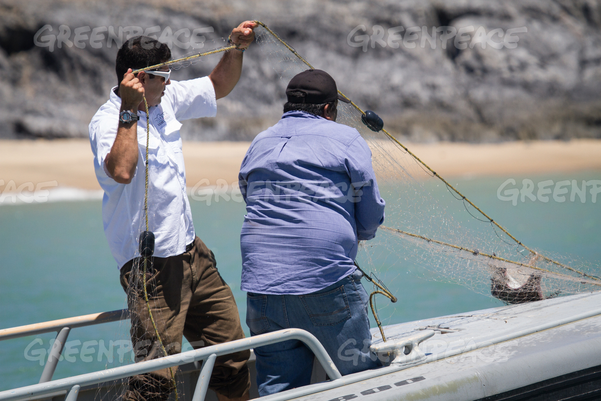 Vaquita Habitat Investigation in Mexico