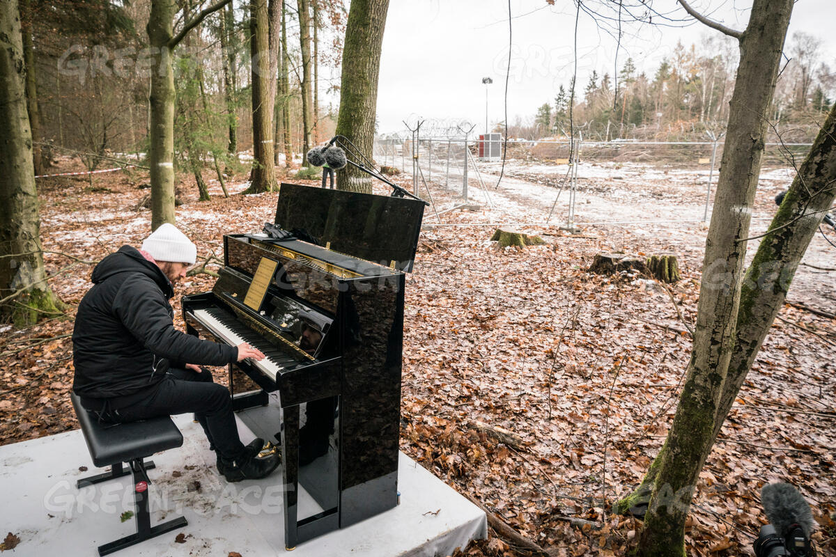 Concert with Igor Levit in the Dannenroeder Forest