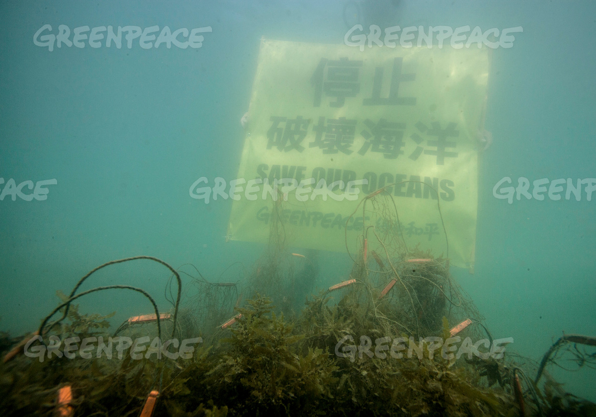 Save Our Oceans Banner in Hong Kong