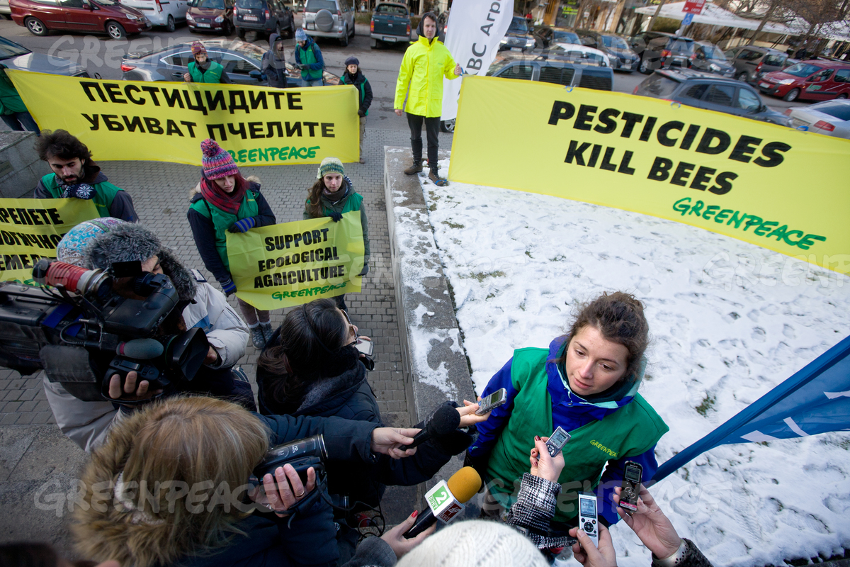 Save the Bees Action in Bulgaria