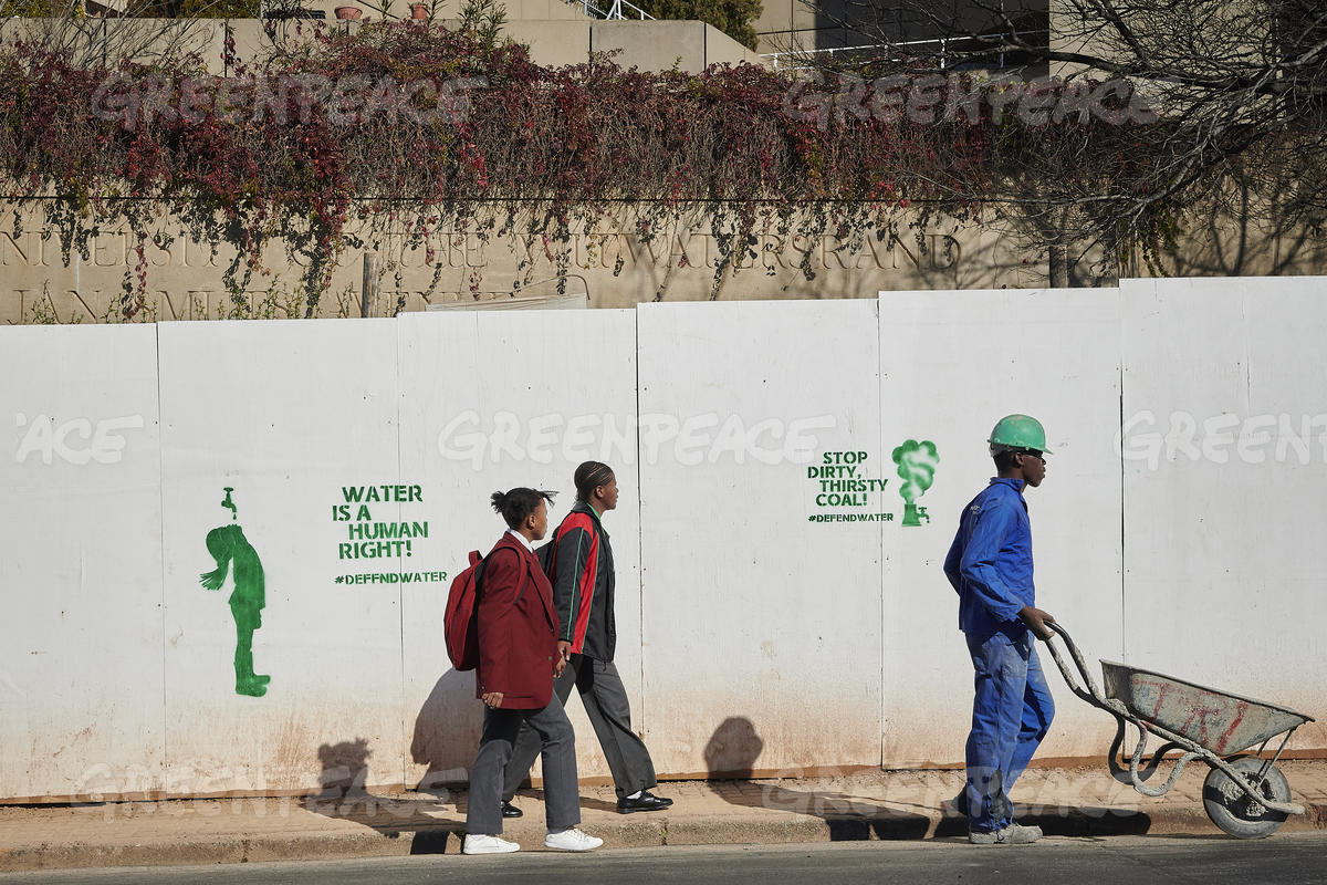 Greenpeace Africa Defend Water Campaign in Johannesburg