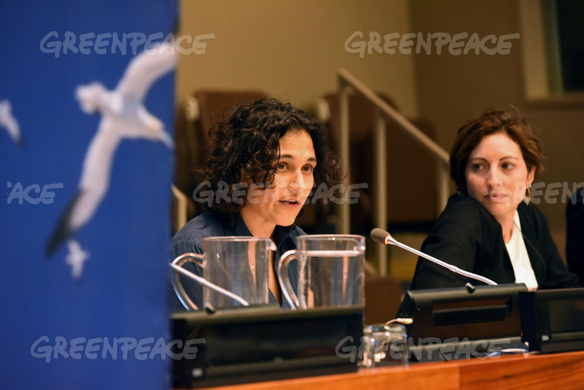 Greenpeace International Side Event at the United Nations in New York