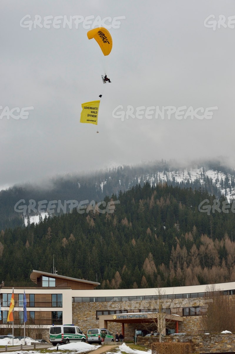 Forest Action with Paraglider in Germany