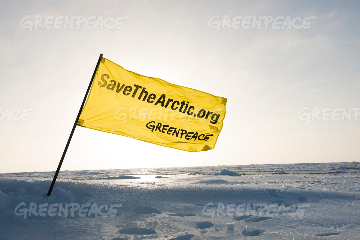 Save The Arctic Flag in the Arctic