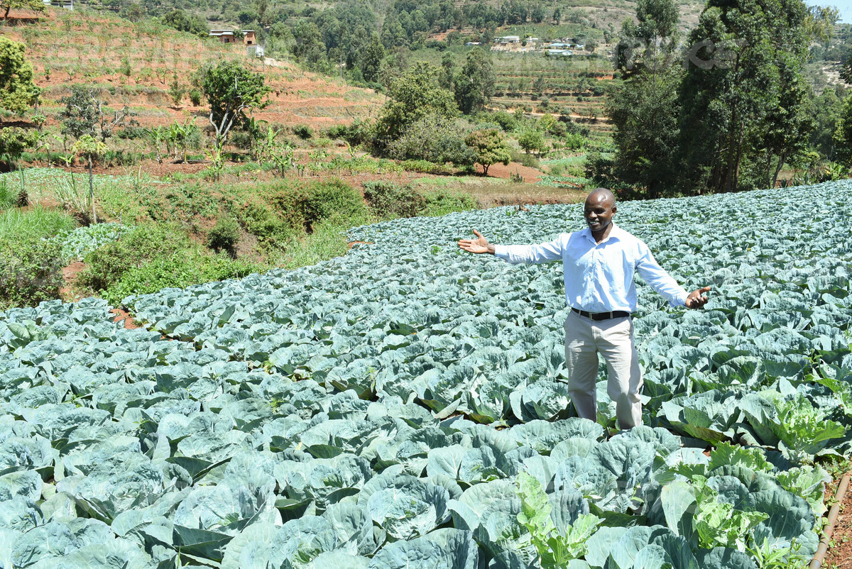Farmer Peter Malu in Makueni County in Kenya