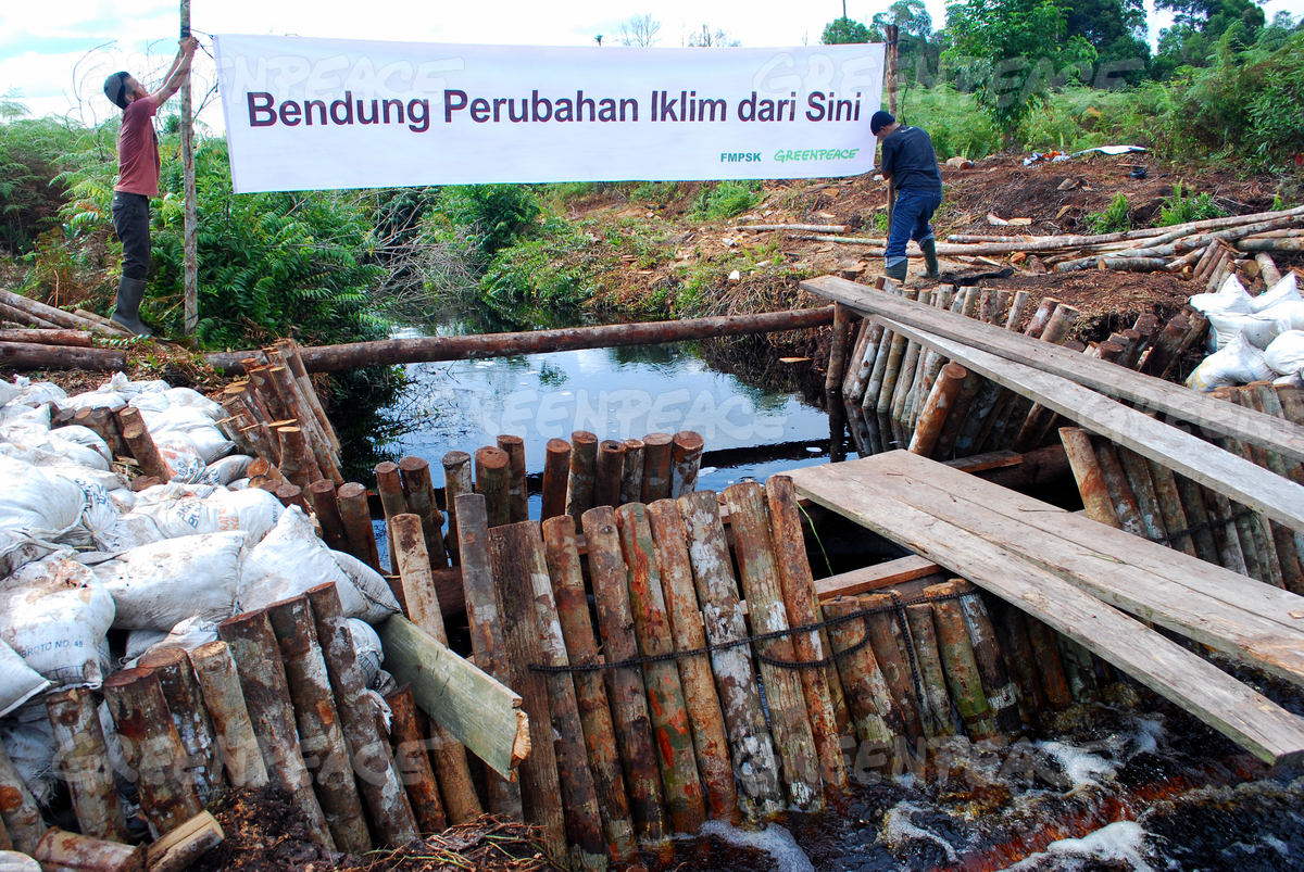 Local Communities Start Kampar Rehabilitation
