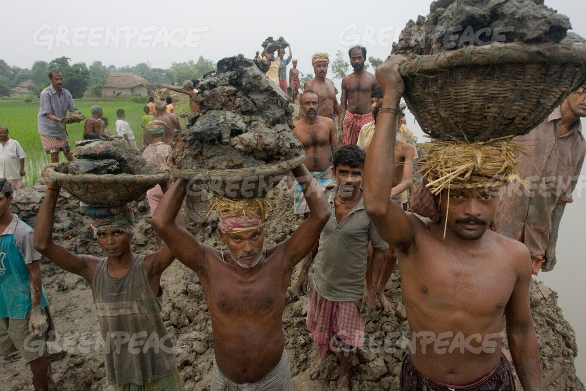 Workers Building a Dike in the Sundarbans Region