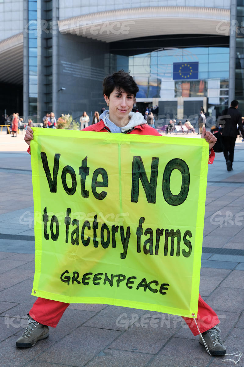 Vote NO to Factory Farming Banner at EU Parliament in Brussels