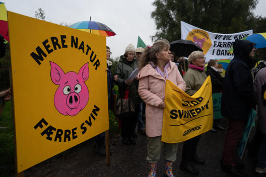 End this Meat Madness Protest in Denmark