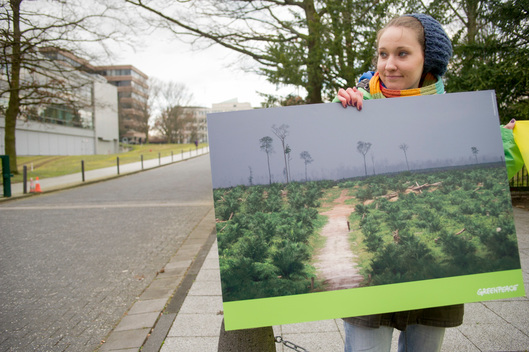 Palm Oil Protest at Procter & Gamble in Germany
