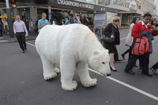 Paula Bear Visits Queen Street in Auckland
