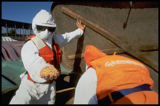 Greenpeace Action Against Monsanto and GE Soybeans in Louisiana