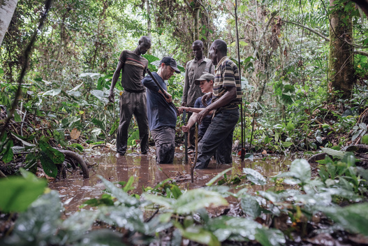Scientific Research on Tropical Peatland in the Democratic Republic of Congo