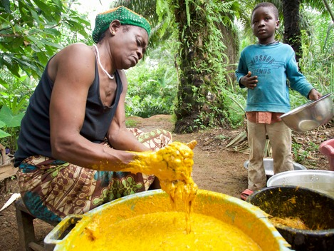 Villagers Using Palm Oil in Cameroon