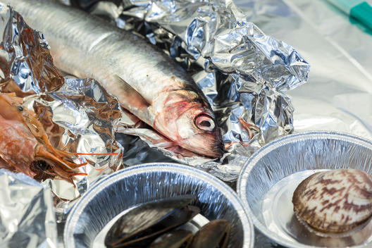 Microplastic in Fish and Seafood Research in Denmark