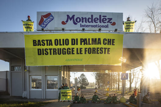 Stop Palm Oil Action at Mondelez Factory in Italy