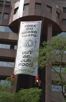 GE Monsanto Action in Brazil