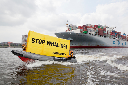 Protest against Whale Meat in Hamburg