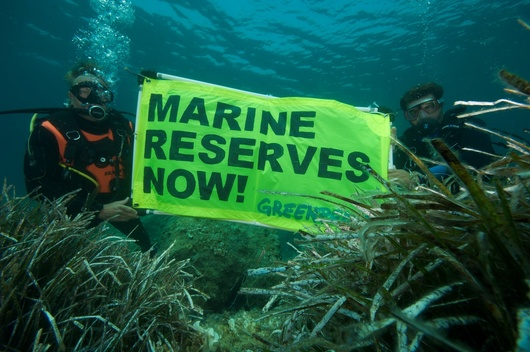 Marine Reserves in the Mediterranean Sea