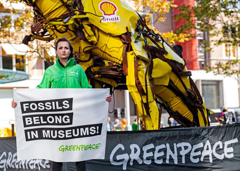 Protest at Shell Annual General Meeting in The Hague