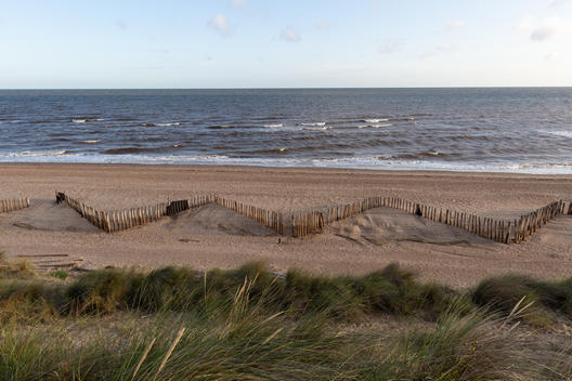 Holme Dunes Reserve in Norfolk, UK