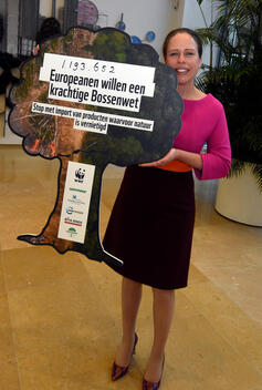 Signatures Delivery to Dutch Minister Schouten for EU Forest Regulation in The Hague (Video)