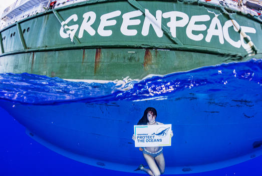 Shailene Woodley with Greenpeace in the Sargasso Sea