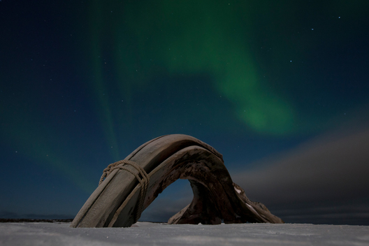 Aurora over Whale Bone in Alaska