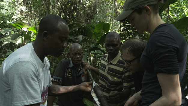DRC Peatland Forests Research - Video News Feature (ENGLISH VERSION)