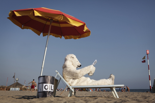Polar Bears Action on the Beach in Italy