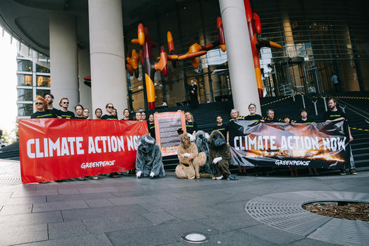Australian Bushfires Global Day of Action in Sydney