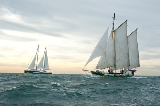 Rainbow Warrior III and Beluga II at North Sea