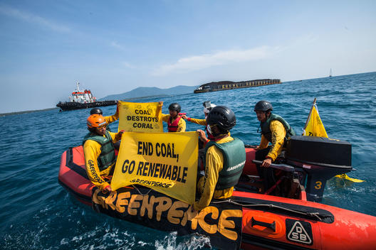 "'Coral Not Coal"" Direct Action at Karimunjava Archipelago in Java Sea"