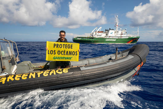 Campaign for Global Ocean Treaty from the Sargasso Sea