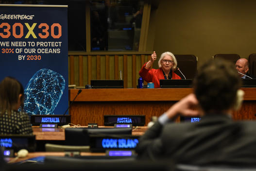 Kristina Gjerde at UN for Global Ocean Treaty Negotiations in New York