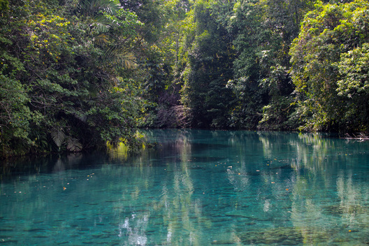 Blue River in South Sorong, West Papua