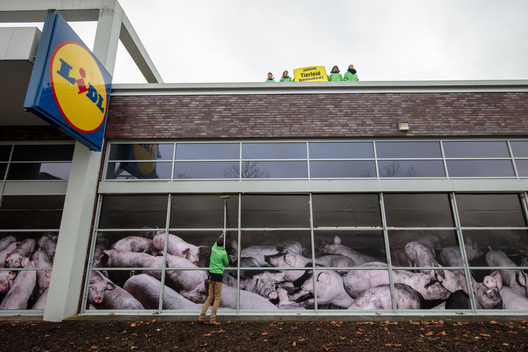 Protest against Lidl's Cheap Meat Policy in Dortmund