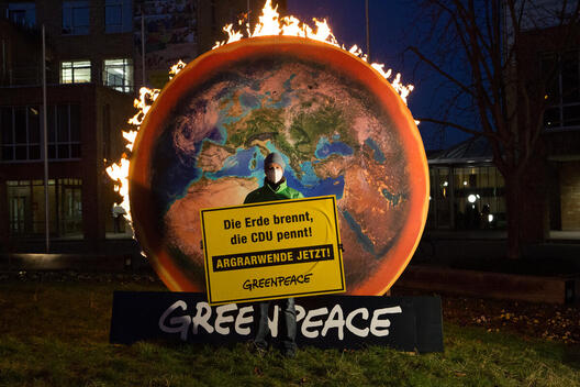 Burning Earth Action for CAP Reform in Stuttgart