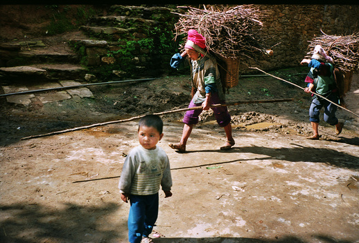 Carrying Firewood in Honghe