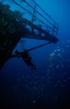 RAINBOW WARRIOR wreck in New Zealand